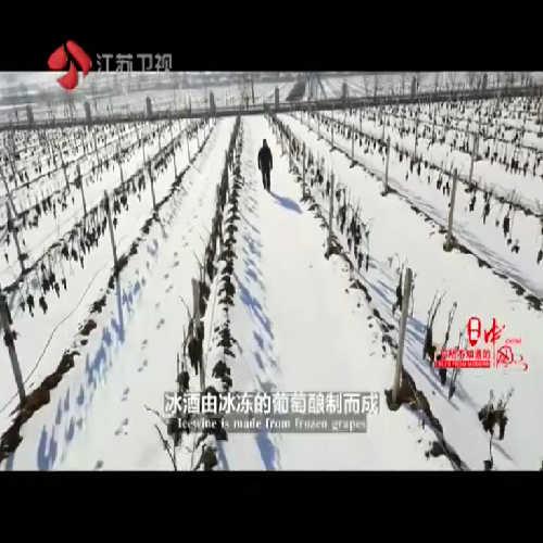 在零下10度的气温里,摘葡萄是什么感受?