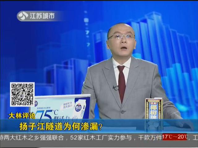 大林评论 扬子江隧道为何渗漏?