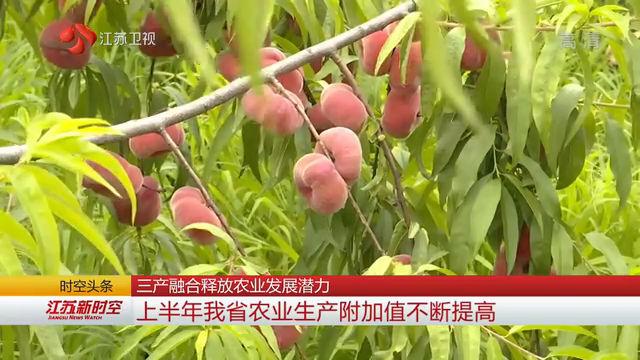 三产融合释放农业发展潜力 2019上半年江苏省农业生产附加值不断提高