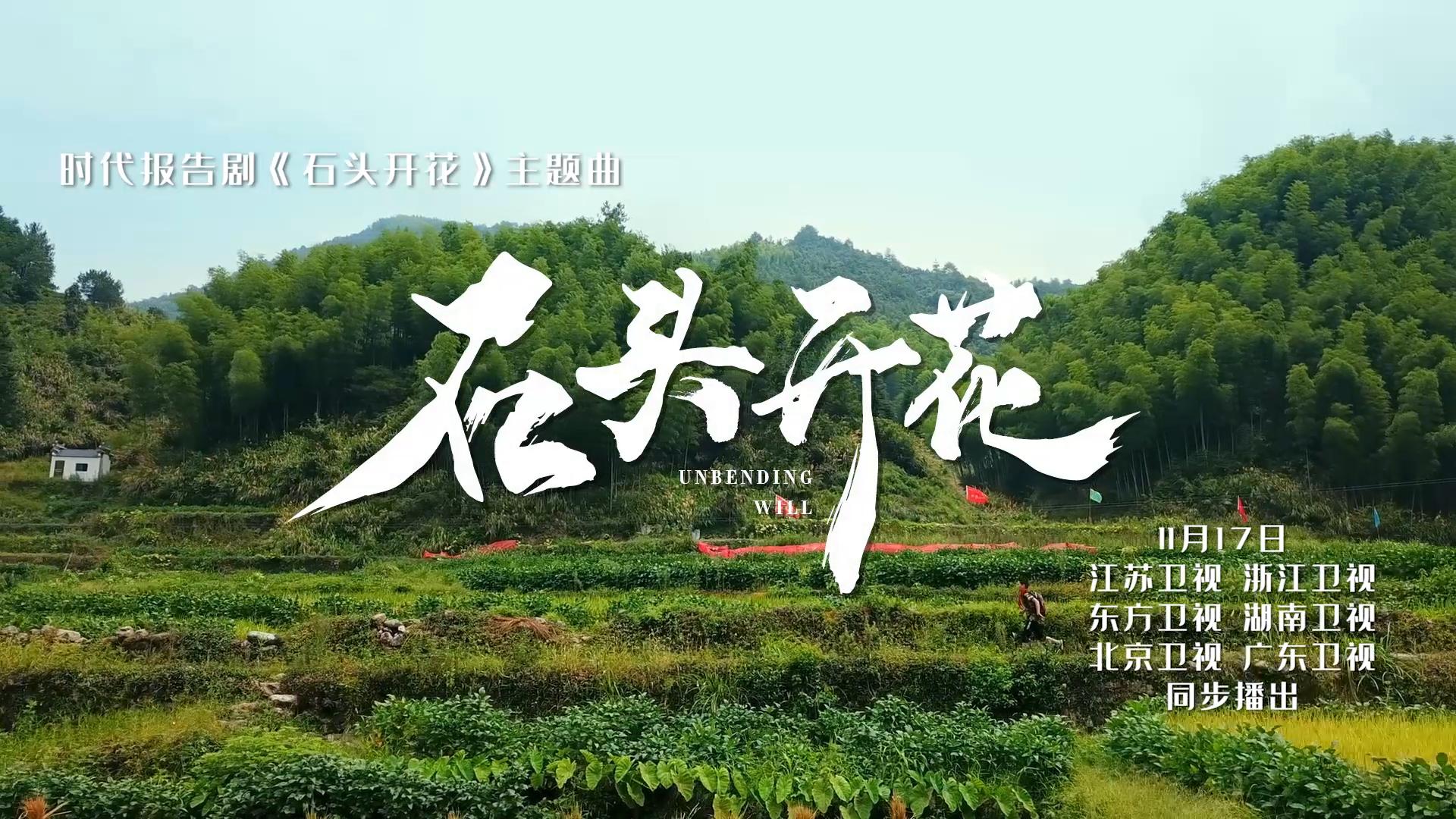 《石头开花》主题曲MV