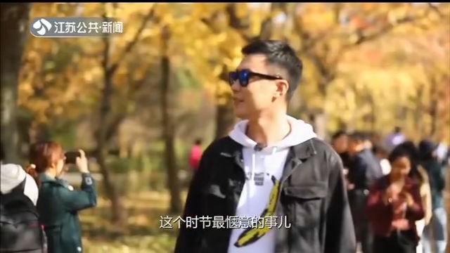 游遍江苏 赏景钟山