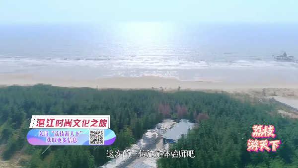 国际荔枝游天下200711湛江终