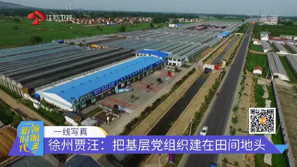 徐州贾汪:把基层党组织建在田间地头