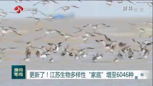 """更新了!江苏生物多样性""""家底""""增至6046种"""
