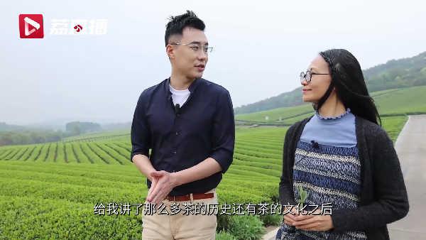 宜兴茶园中的日本良种茶:源自中国,技术反哺