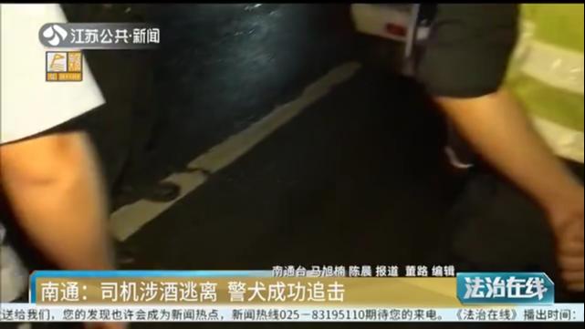 南通:司机涉酒逃离 警犬成功追击