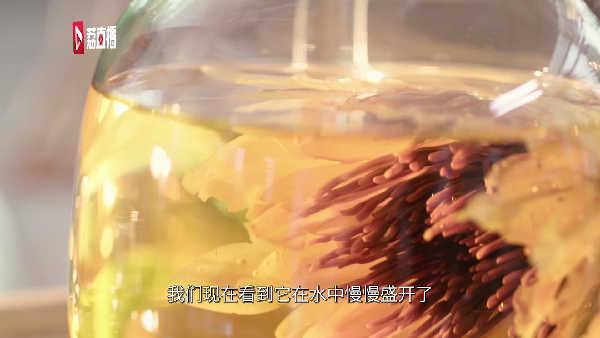 游遍江苏丨这是一朵能喝的神奇睡莲